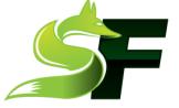Free PowerPoint Slides by SageFox